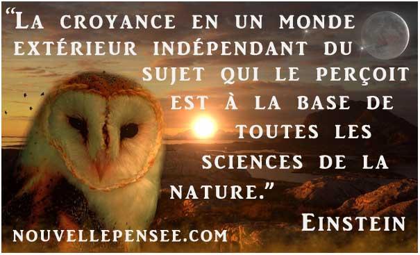 citation einstein sur le réel illustré d'un paysage avec un hibou, le soleil, la lune...